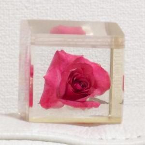 アクリル封入のバラ