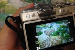 camera_satsuei